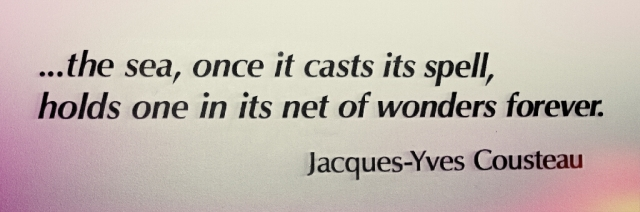 Quote Jacques-Yves Cousteau