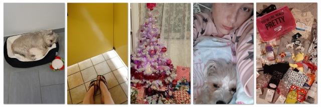 Instagram December